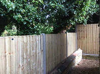 Panel fencing in Amesbury